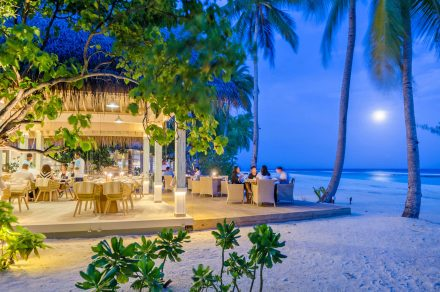 dine in the evening atmosphere