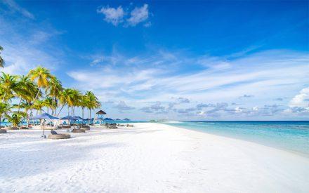 playa blanca en un día soleado