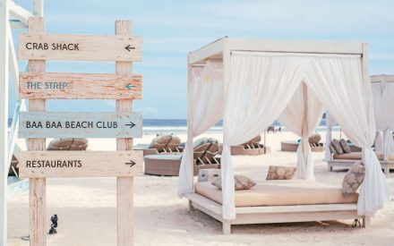 gorgeous sun lounges at beach