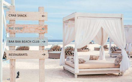 gorgeous sun lounges at beach