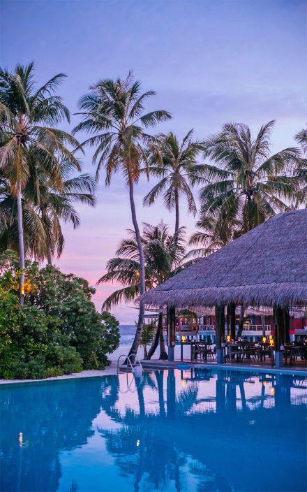 cena en playa de palmeras